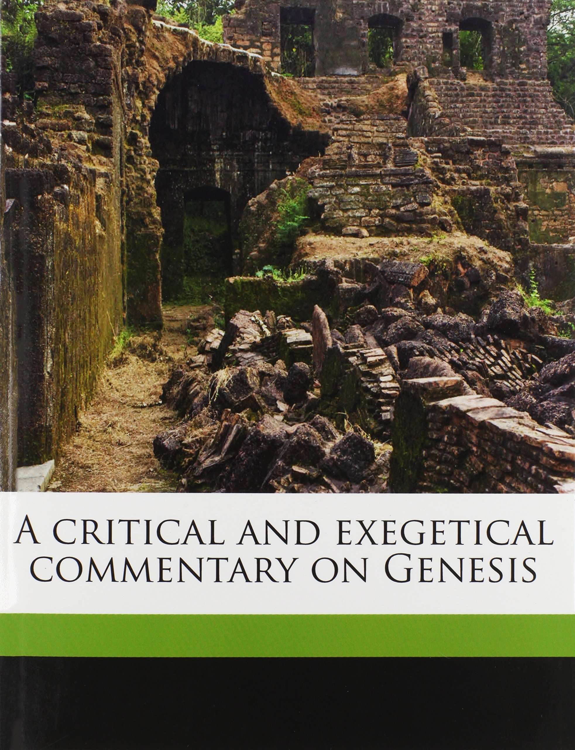 A critical and exegetical commentary on Genesis: John Skinner ...