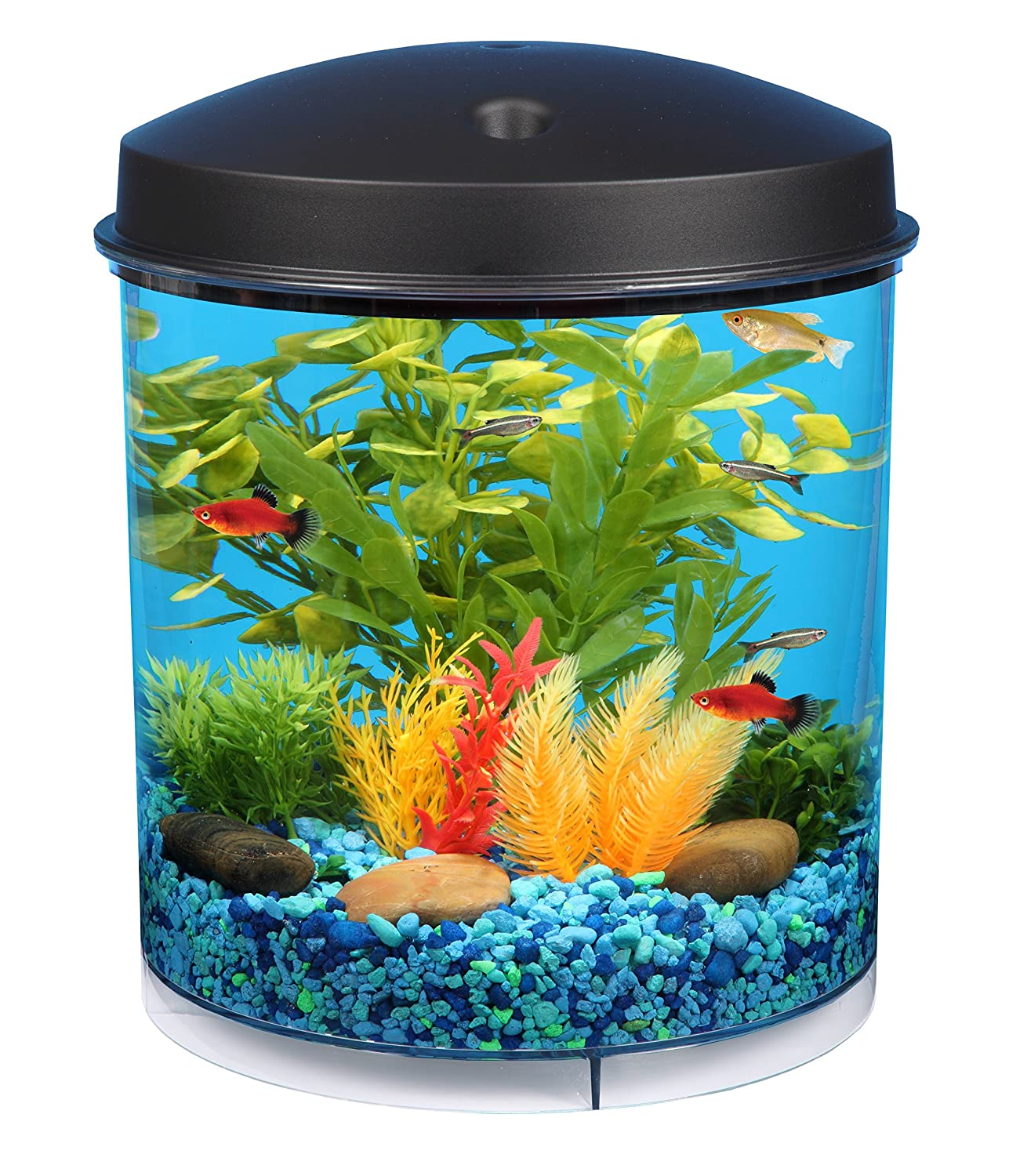 Small aquarium fish tanks - Amazon Com Api Aquaview 360 Aquarium Kit With Led Lighting And Internal Filter 2 Gallon Topfin Fish Aquariums Pet Supplies