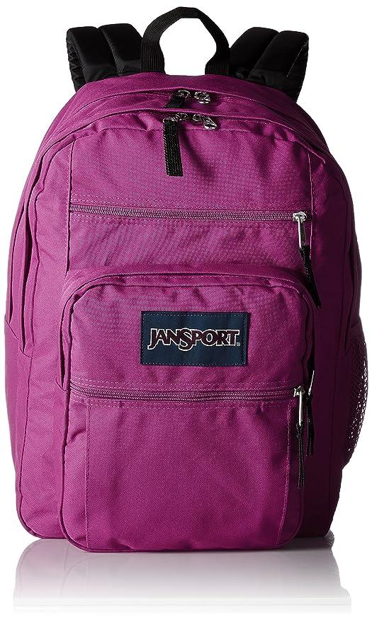 1e1e0f171b3c Amazon.com  JanSport Big Student Classics Series Backpack - Cyber ...