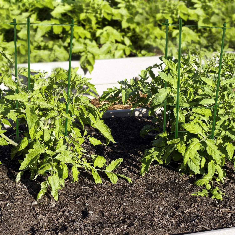 Boao 2 Juegos de Soporte de Planta Ajustable Jaula de Tomate de ...
