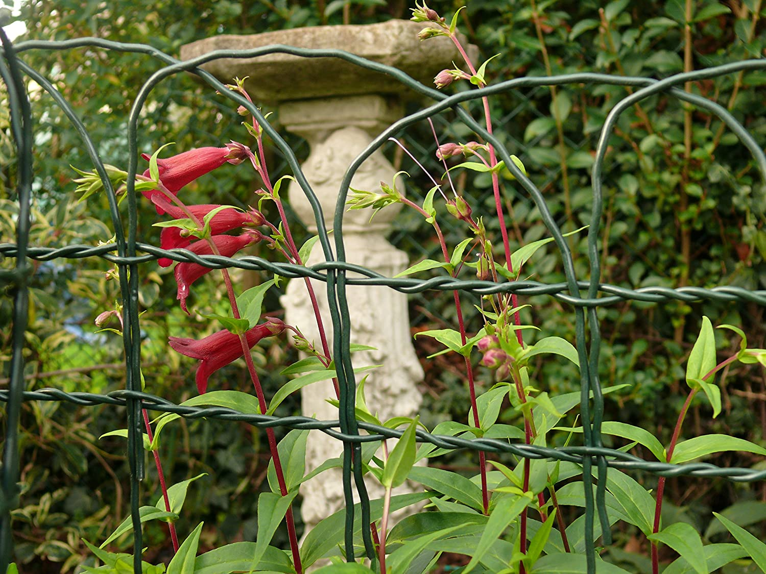 Decorative Garden Fencing 0.4m x 10m Arch Top Green Steel Fence ...