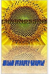 Chronossino (French Edition) Kindle Edition