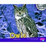 Owls (Nocturnal Animals)