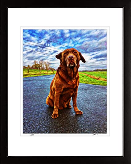 Amazon Com Ombura Beautiful Chocolate Labrador Dog Handmade Wall