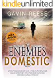 Enemies Domestic (The Enemies Series Book 1)