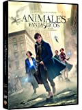 Fantastic Beasts and Where to Find Them (ANIMALES FANTÁSTICOS Y DONDE ENCONTRARLOS - DVD -, Spain Import, see details for langua