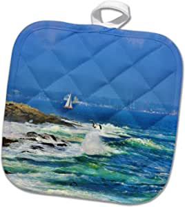 3drose Pot Holder Sailboat And Sea Birds In Rhode Island Home Kitchen