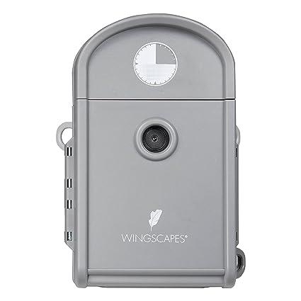 Amazon.com: Moultrie wingscapes Timelapse cámara: Sports ...