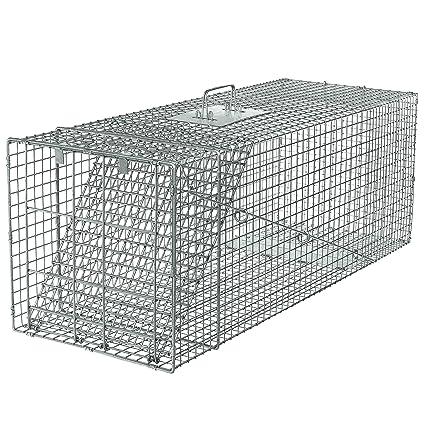 Amazon.com: Havahart 1081 trampa de caja de una puerta para ...