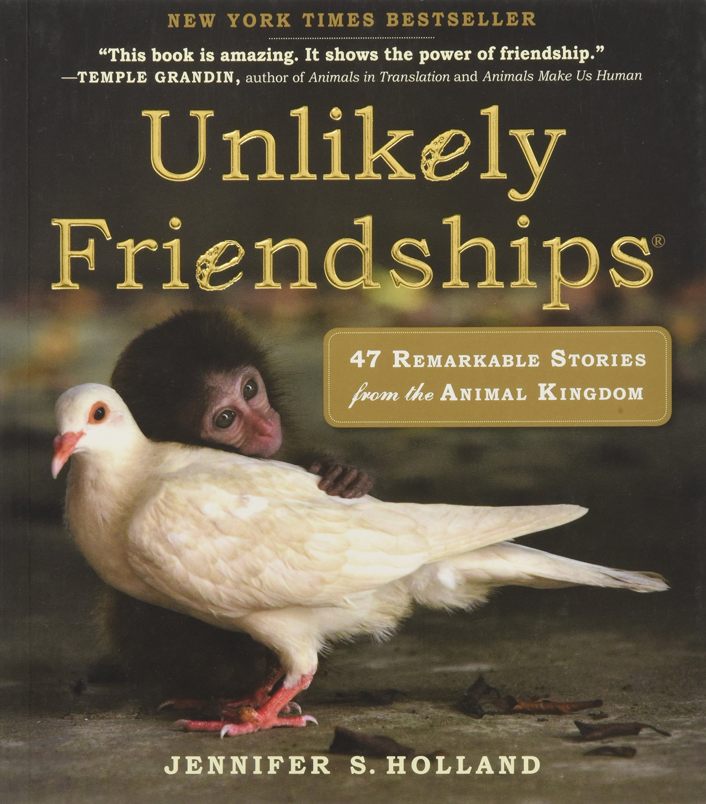 Unlikely Friendships Remarkable Stories from the Animal