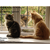 Reiki & Hands-On Healing for Cats - The Realistic Approach (English Edition)