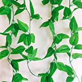 Rain forest Artificial Plant Vines (Value Pack of 2 x 8Ft) Rain forest Green for Living Room