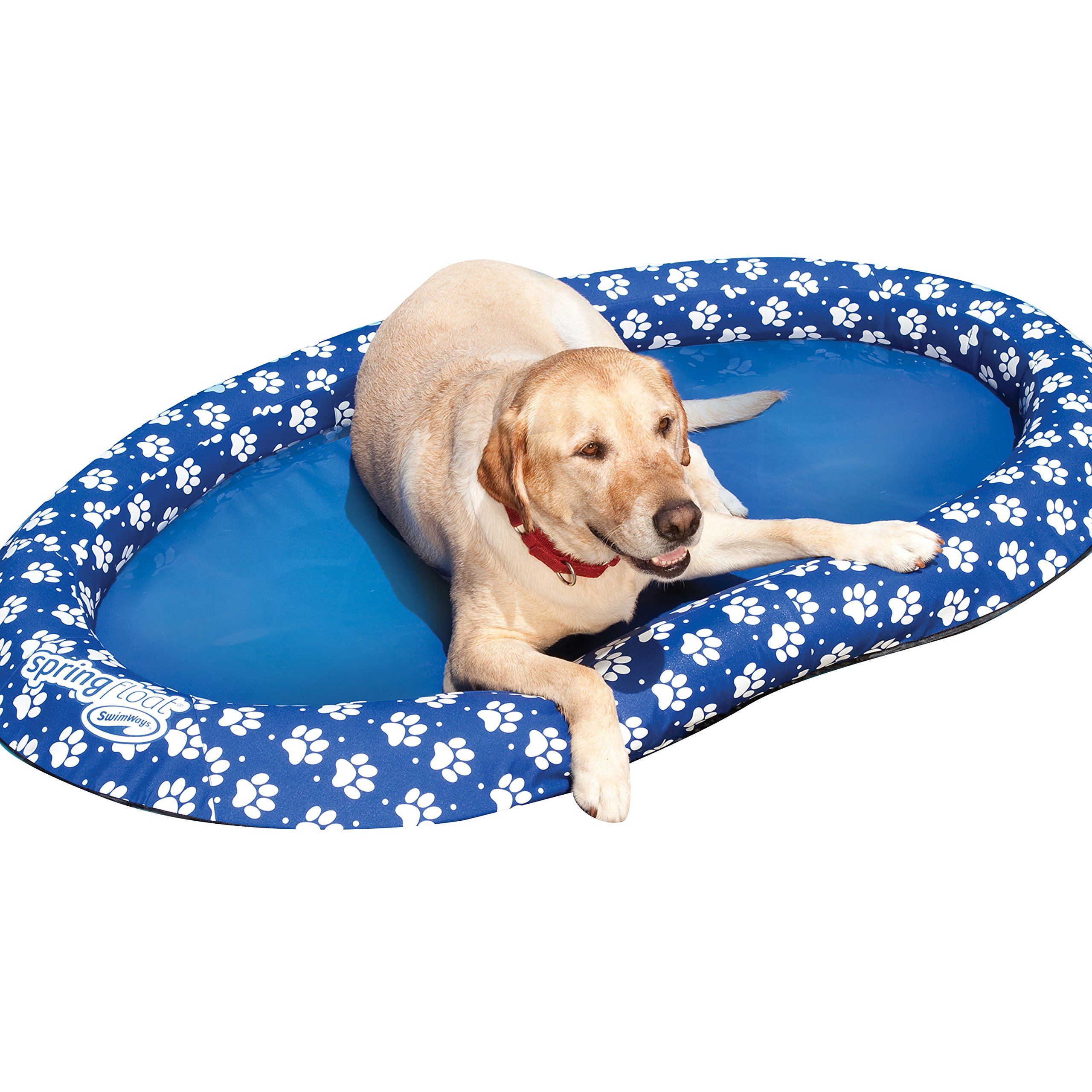 SwimWays Spring Float Paddle Paws Dog Pool Float - Large (65 lbs and Up) by SwimWays