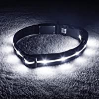 Blazin' Safety Led Dog Collar USB Rechargeable with Water Resistant Flashing Light, X-Small, Black
