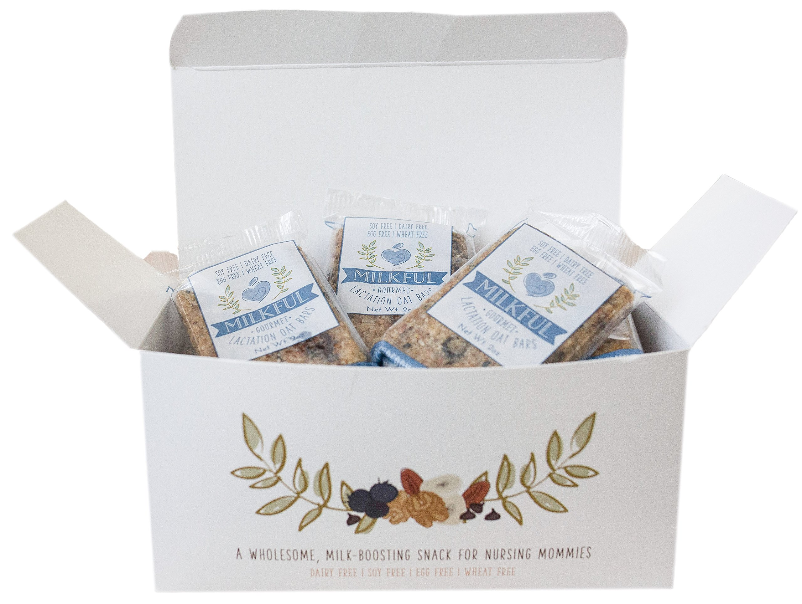 MILKFUL Lactation Bars, wholesome & delicious snack to increase breast milk supply. 12 Bars. (Dairy Free, Egg Free, Soy Free, Wheat Free) (Blueberry Almond Coconut) by MILKFUL