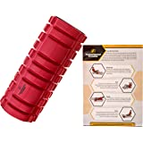 Foam Roller for Trigger Point & Physical Therapy, Myofascial Release, Muscle Massage & Pain Recovery, Deep Tissue Massager - Pressure Points Foam Roller, Starter Pamphlet, Storage Compartment