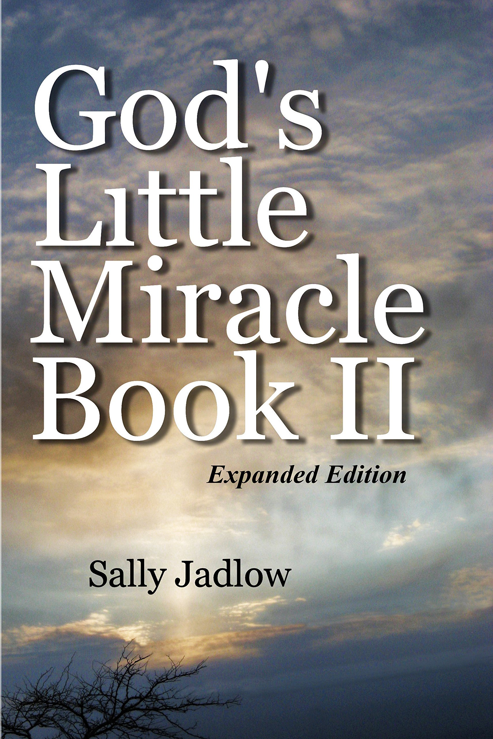 Read Online God's Little Miracle Book II ebook
