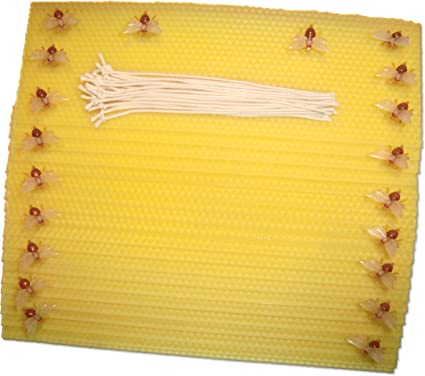 Diy Bienenwachs Bastelset Kerzen Aus Bienenwachsplatten