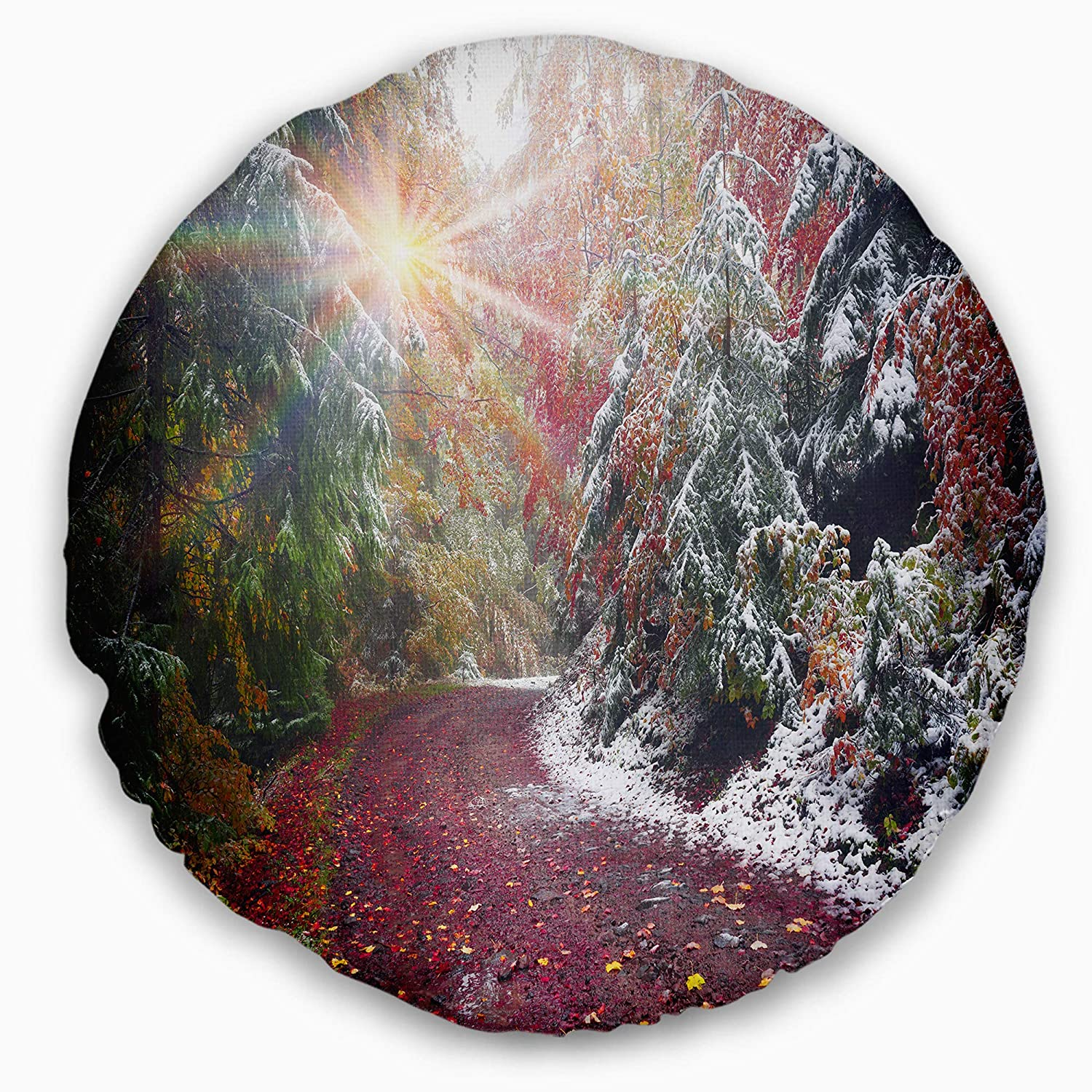 Insert Printed On Both Side Sofa Throw Pillow 16 Designart Cu9821 16 16 C Breathtaking View Of Aline Forest Landscape Photography Round Cushion Cover For Living Room Home Kitchen Bedding
