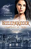 Seelenkrieger - Dämonische Liebe: Band 6 der Fantasy-Romance-Reihe (Seelenkrieger-Reihe)