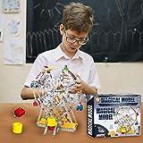 IQ Toys Ferris Wheel Building Model with Metal