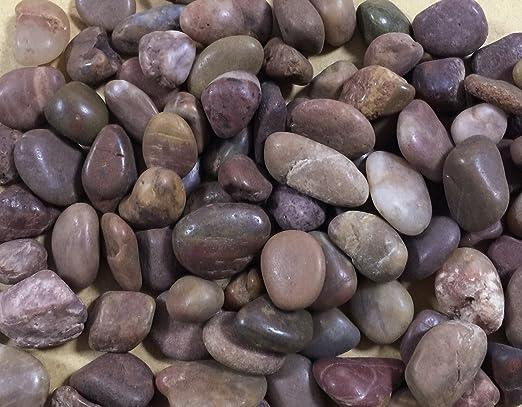 Piedras ornamentales 1-2 cm / 2 kg fondo acuario estanque jardín: Amazon.es: Productos para mascotas