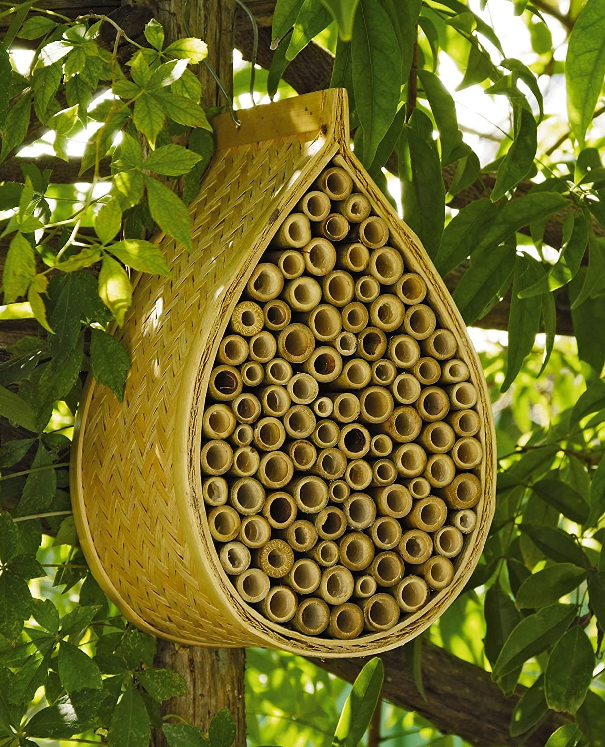 Amazon Mason Bee House Garden Outdoor