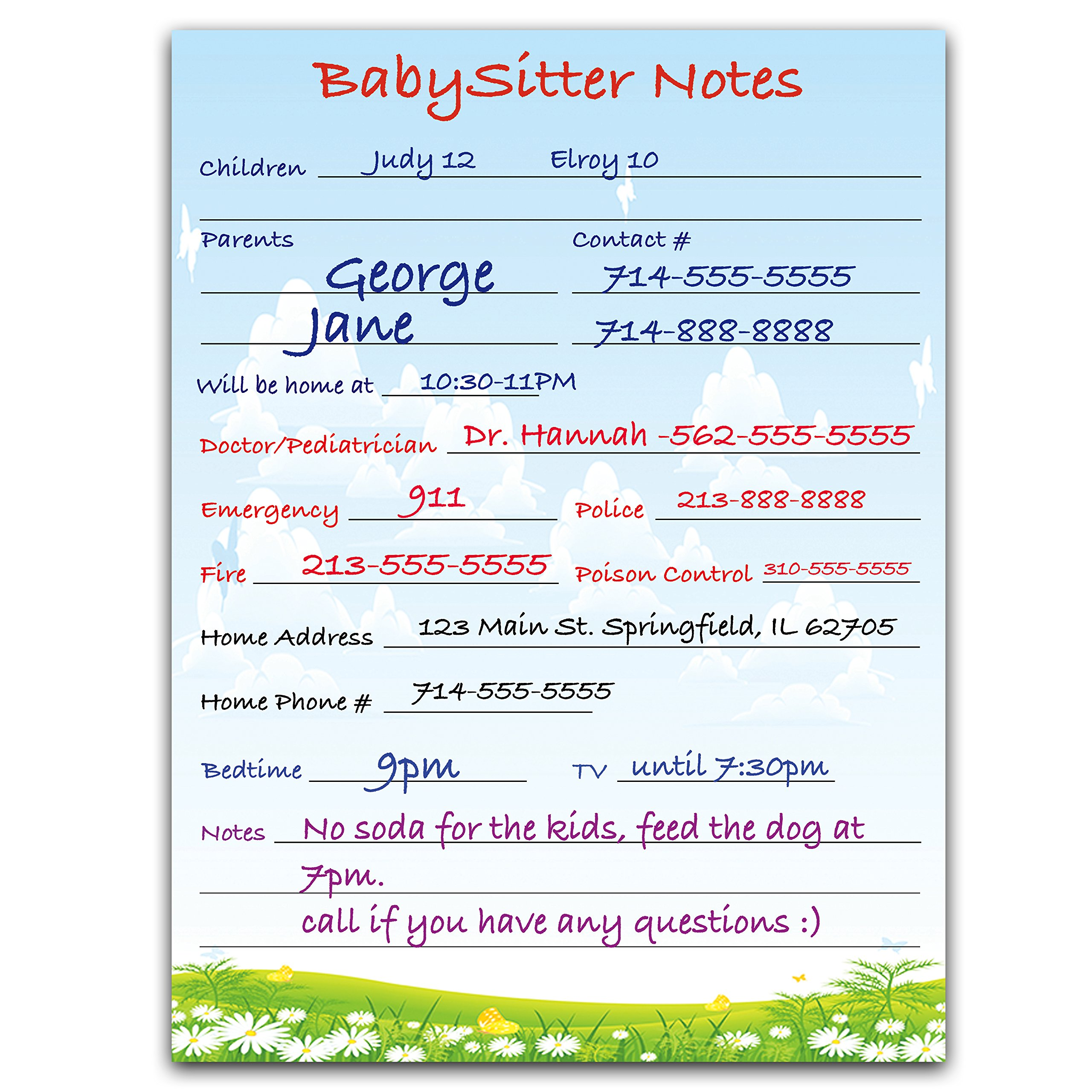 Magnetic Babysitter Dry Erase Memo Info. Board For Fridge (Babysitter)
