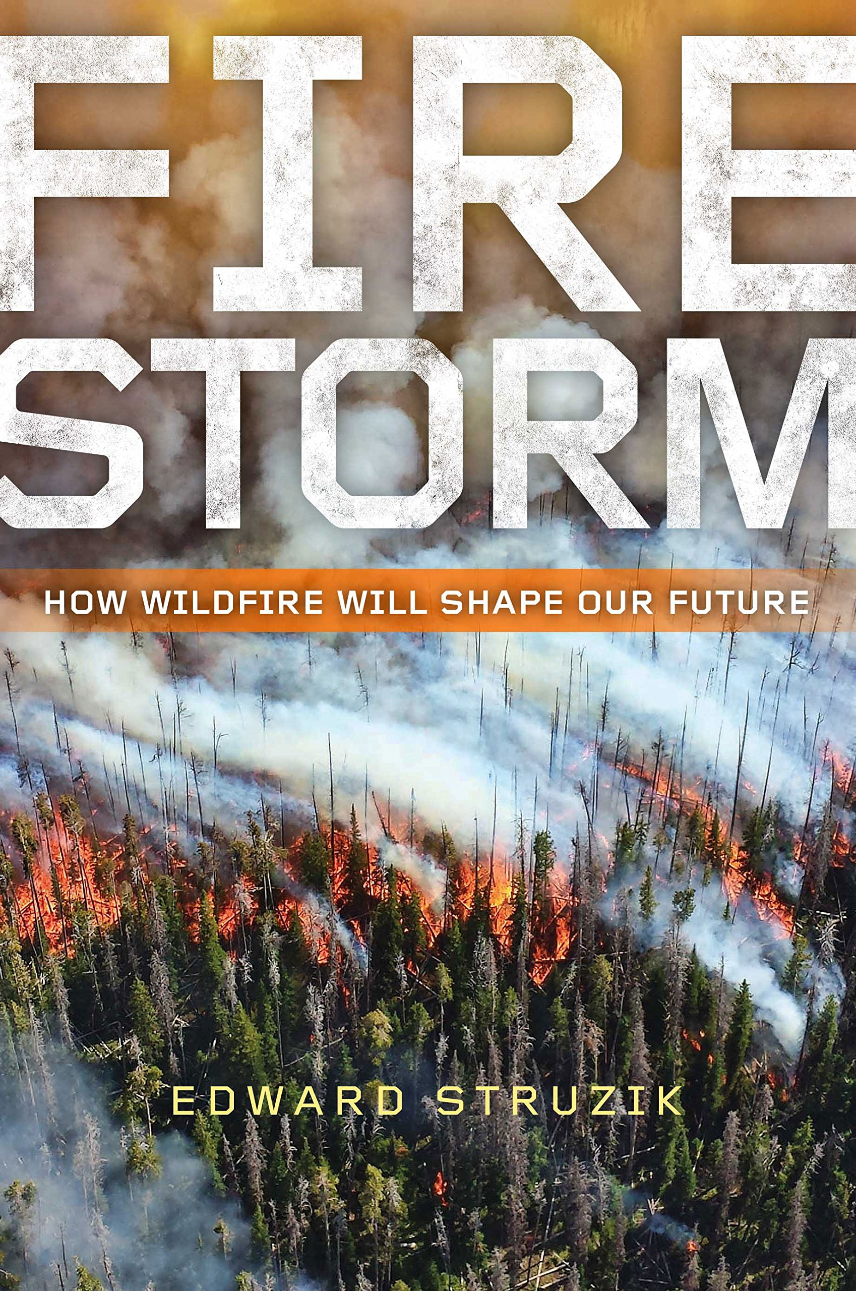 Firestorm: How Wildfire Will Shape Our Future: Edward