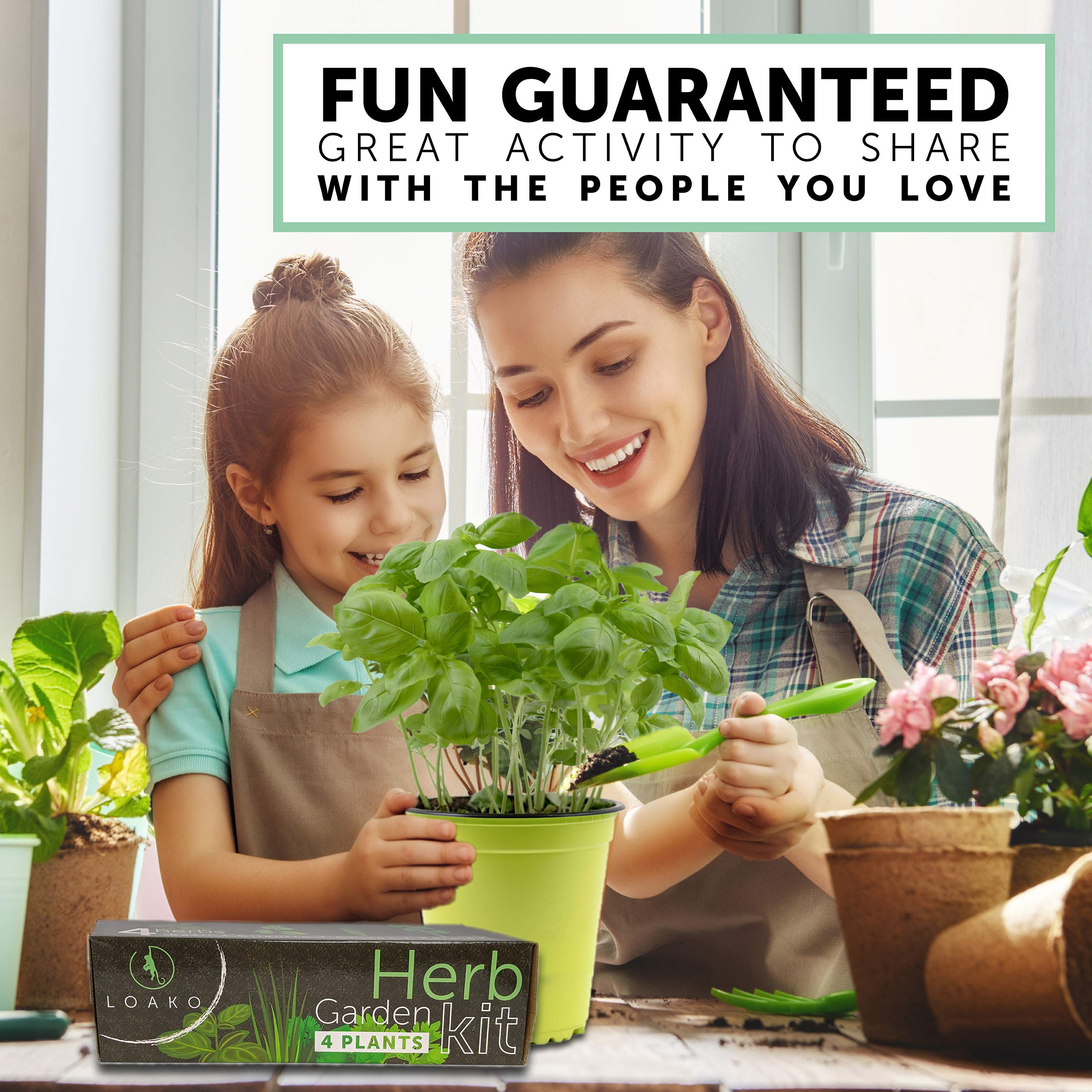 Herb Garden Kit. Includes Pots, Seeds, Soil Pellets, Markers, Instructions Booklet. Basil, Parsley, Cilantro, Chives. Great Gift Idea. Very Easy to Grow by Loako (Image #4)