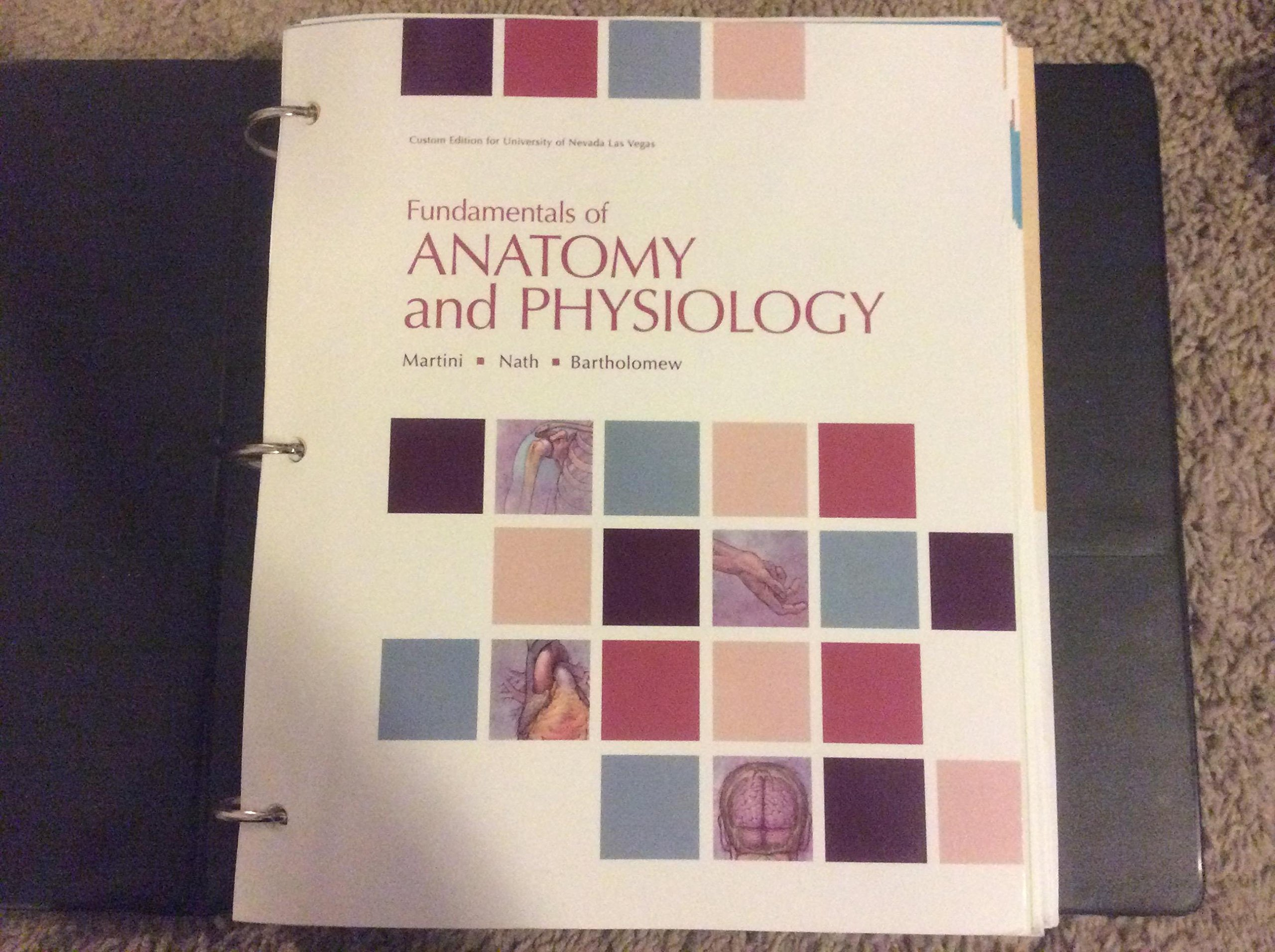 Fundamentals of Anatomy & Physiology 9th Ed. Custom for UNLV ...