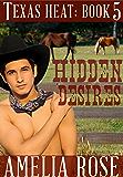 Hidden Desires (Contemporary Cowboy romance) (Texas Heat Book 5)