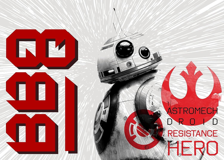 Medium G.A Dropship 31089 Gertmenian: Star Wars Rug episode 8 HD BB-8 Last Jedi Bedding Area Rugs 40x54 inch Gertmenian /& Sons