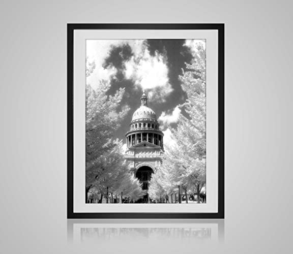 Amazon.com: Texas State Capitol - Photographic Art of the capitol ...