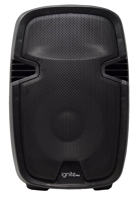 Ignite Pro 10 Pro Series Speaker DJ/PA System/Bluetooth Connectivity 1800W (10)