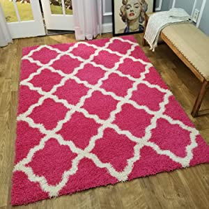 Maxy Home Shag Area Rug 3x5 | New Moroccan Trellis Pink Shag Rugs for Living Room Bedroom Nursery Kids College Dorm Carpet by European Made MH10
