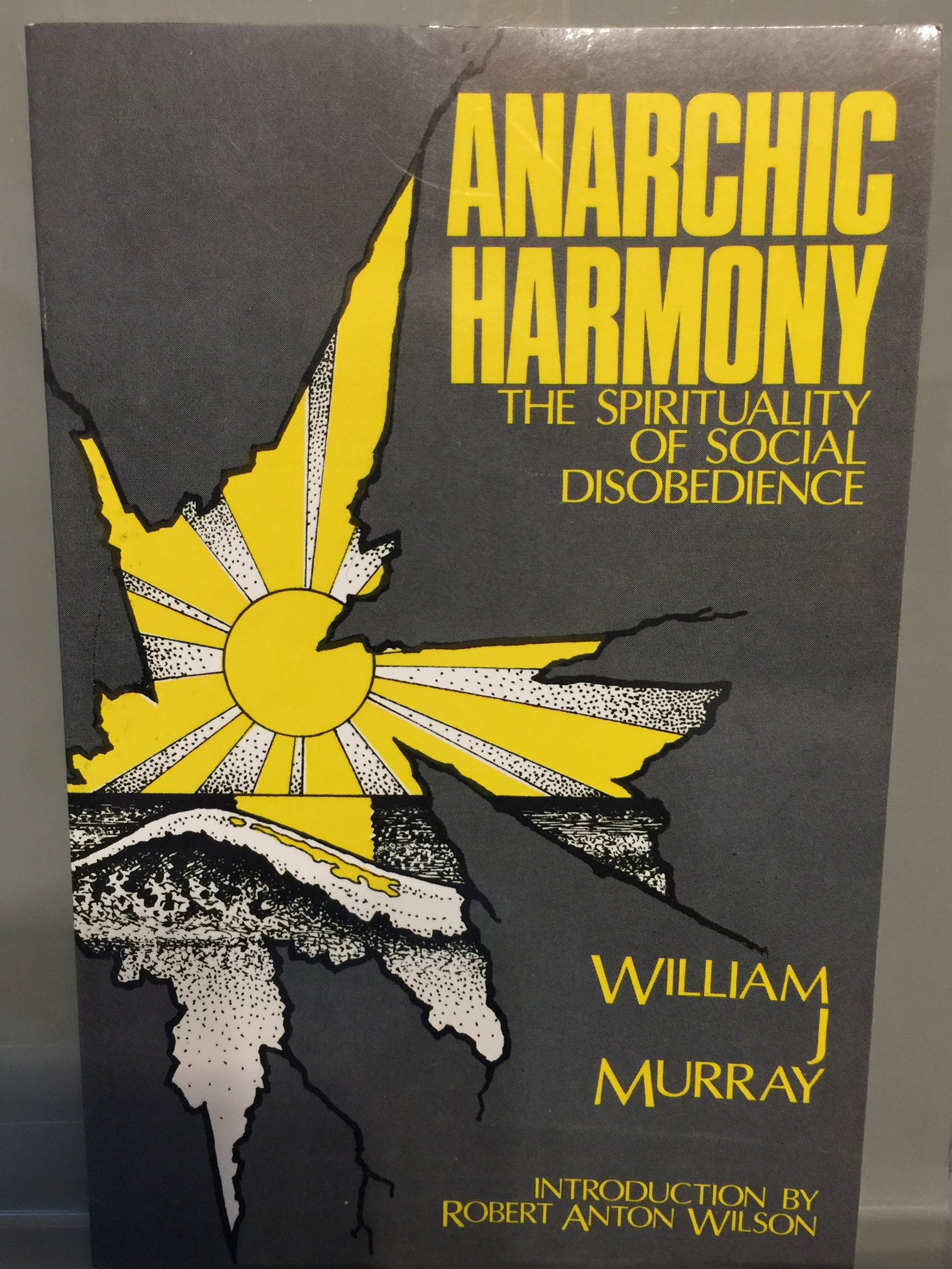 Anarchic Harmony: The Spirituality of Social Disobedience, Murray, William J.