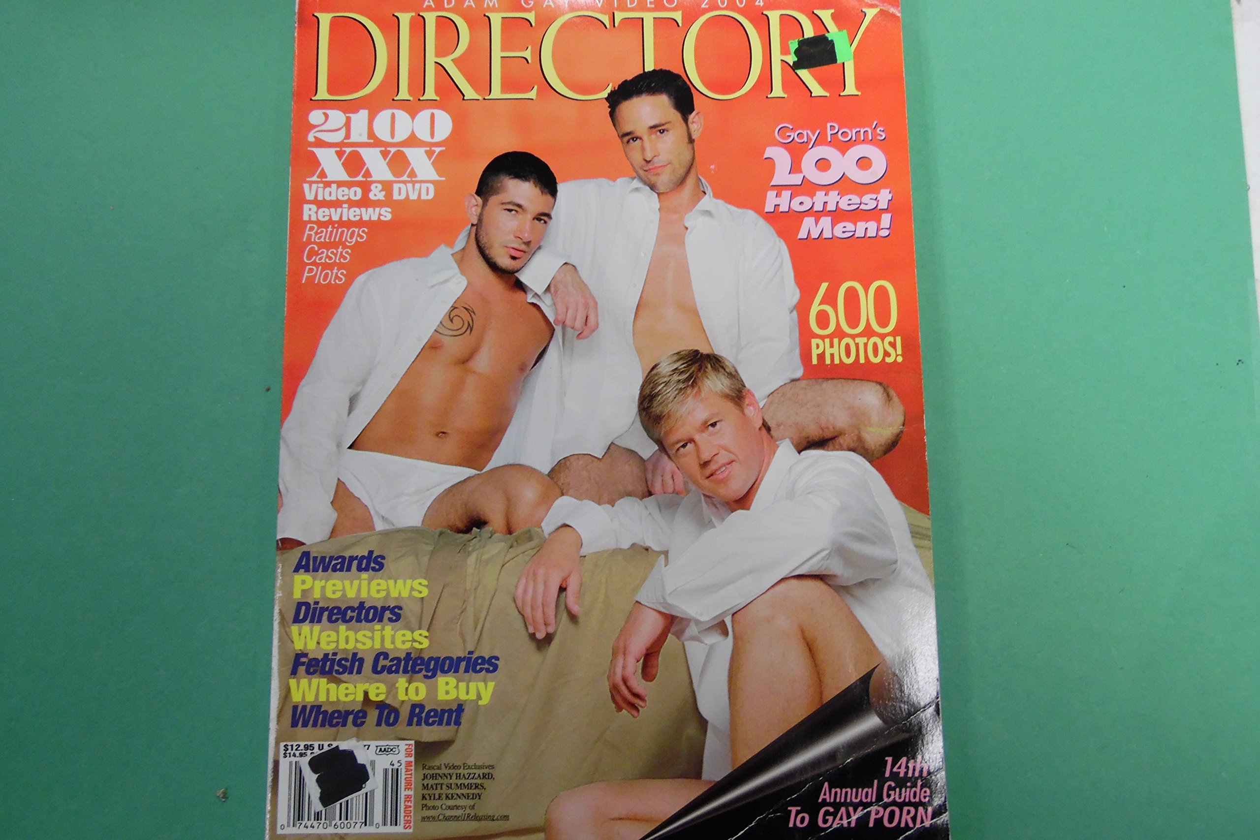 Adam Gay Video 2004 Directory Magazine Matt Summers over 200 pages!  Paperback – 2004