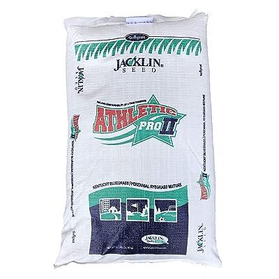 Jacklin Seed - Athletic Pro II | 50% Kentucky Bluegrass, 50% Perennial Ryegrass | Certified Grass Seed (20 lbs (8000 sq. ft.)) : Garden & Outdoor
