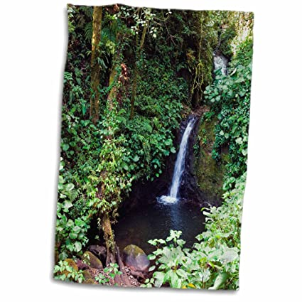 3dRose Waterfall, Monteverde Cloud Forest Reserve, Costa Rica Toalla ...