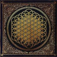 Sempiternal (includes CD copy) (Vinyl)