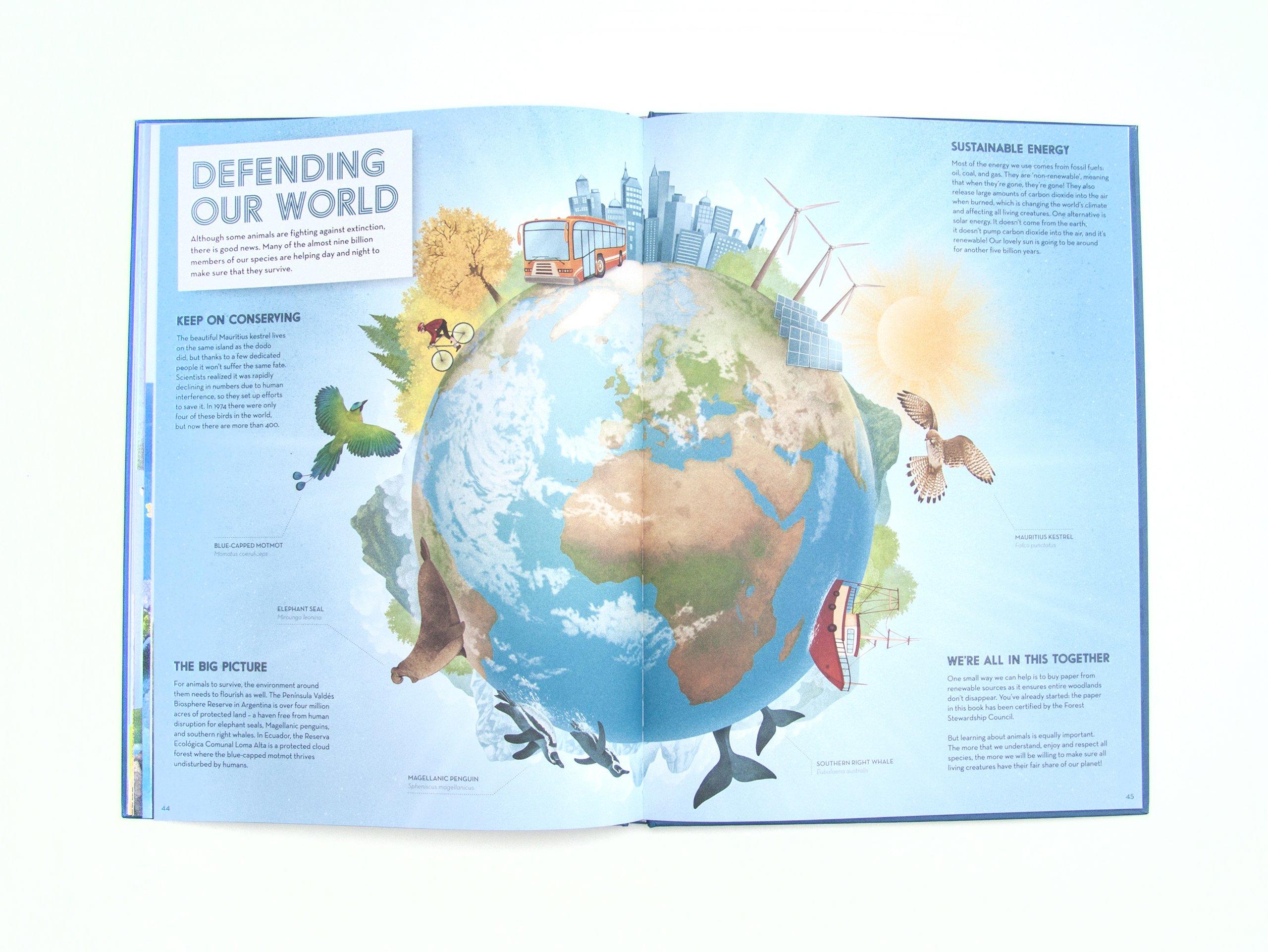 The Amazing Animal Atlas Dr Nick Crumpton Gaia Bordicchia Elephant Seal Diagram For Pinterest 9781909263116 Books