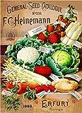 1898 Heinemann Vegetable Vintage Seed Packet Catalogue Travel Advertisement Poster