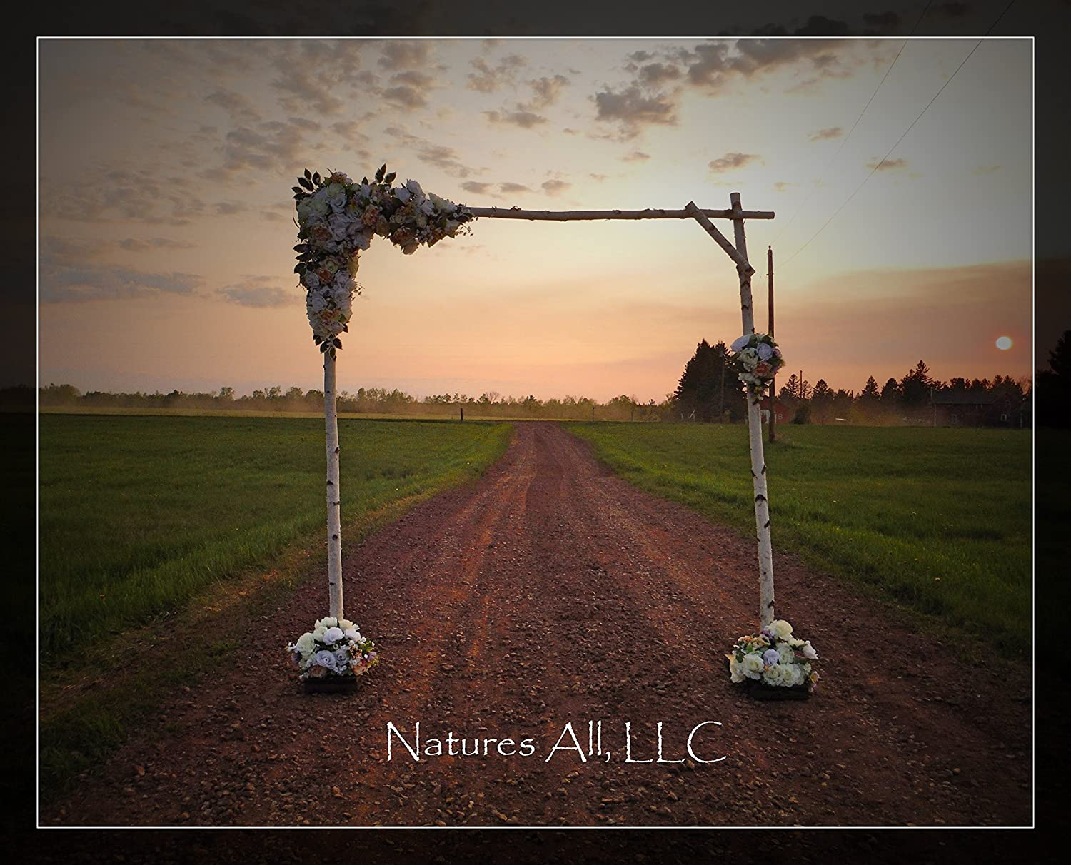 Amazon DIY White Birch Wedding Arch Handmade