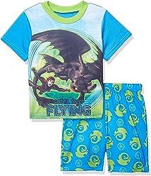 faf9703de DreamWorks How to Train Your Dragon Boys  2-Piece Pajama Set