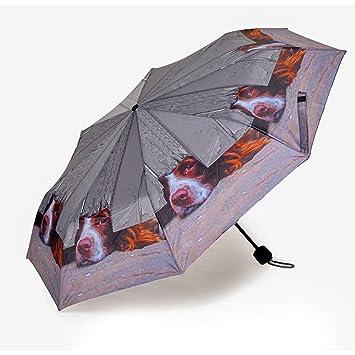 Valentina Ramos Spaniel calidad Mini Folding paraguas bolso de mano (tamaño)