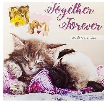 Calendario 2018 de pared, con imágenes de cachorros: gatos, conejos, patos,