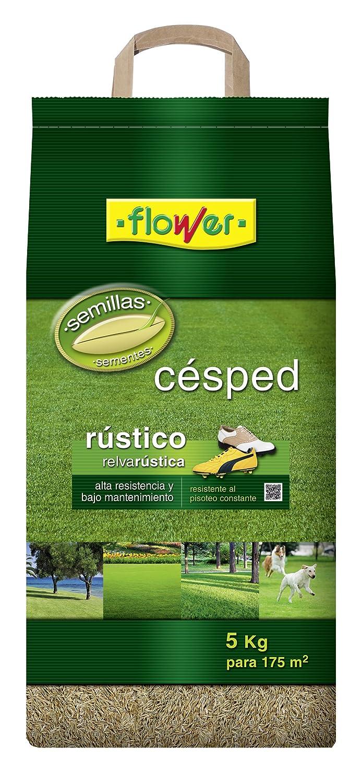 Flower 10783 10783-Semilla césped rústica, 5 kg, No Aplica, 25x14.5x54 cm: Amazon.es: Jardín