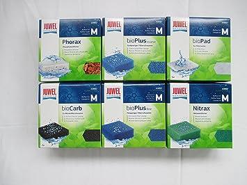 Juwel - Juego de filtros compactos antialgas, 5 esponjas de Filtro compactas de Juwel Phorax: Amazon.es: Productos para mascotas