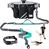 SHINE HAI Retractable Hands Free Dog Leash with Dual Bungees for Dogs up to 150lbs, Adjustable Waist Belt, Reflective Stitchi